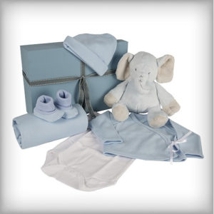 image of a baby boy elephant hamper